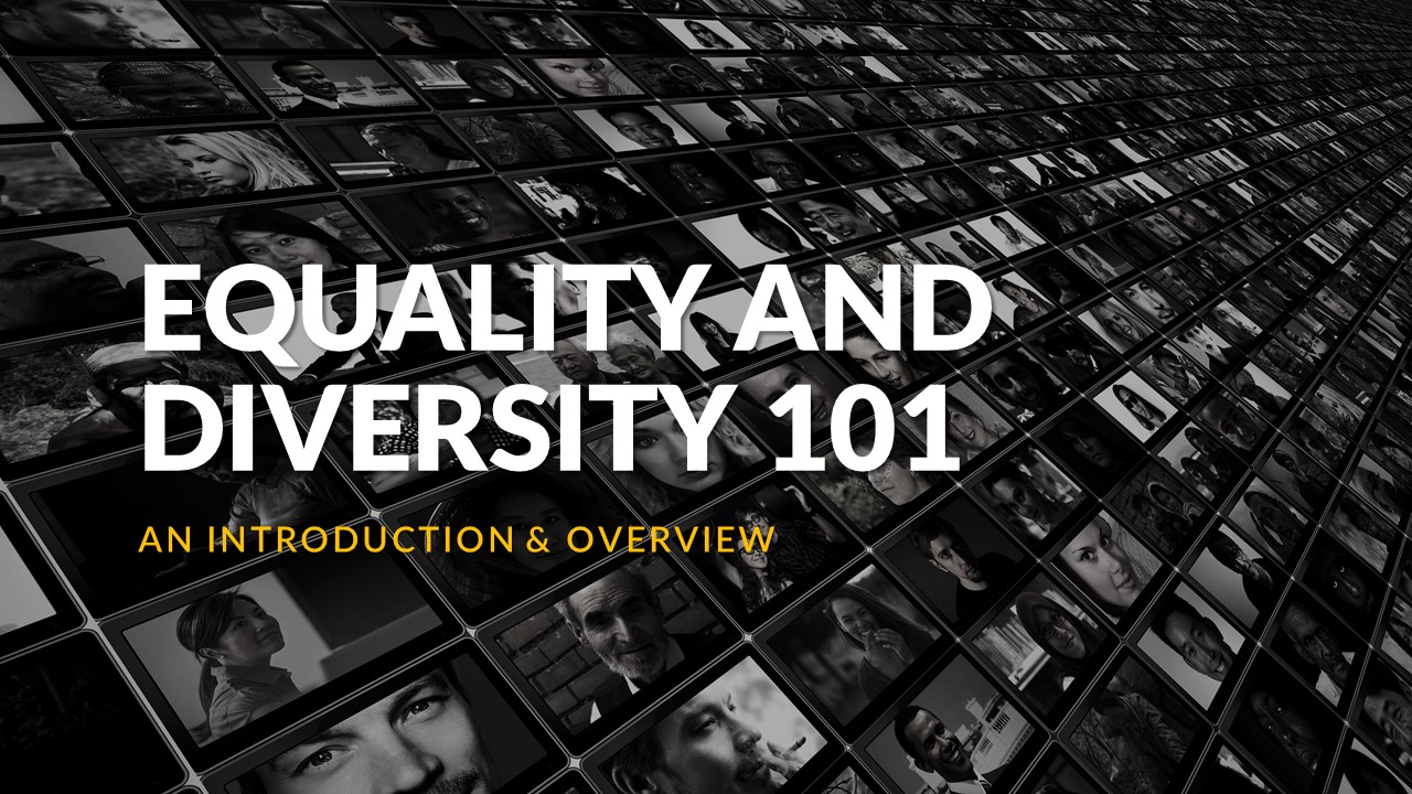 Equality & Diversity 101 – An Introduction & Overview – Synopsis
