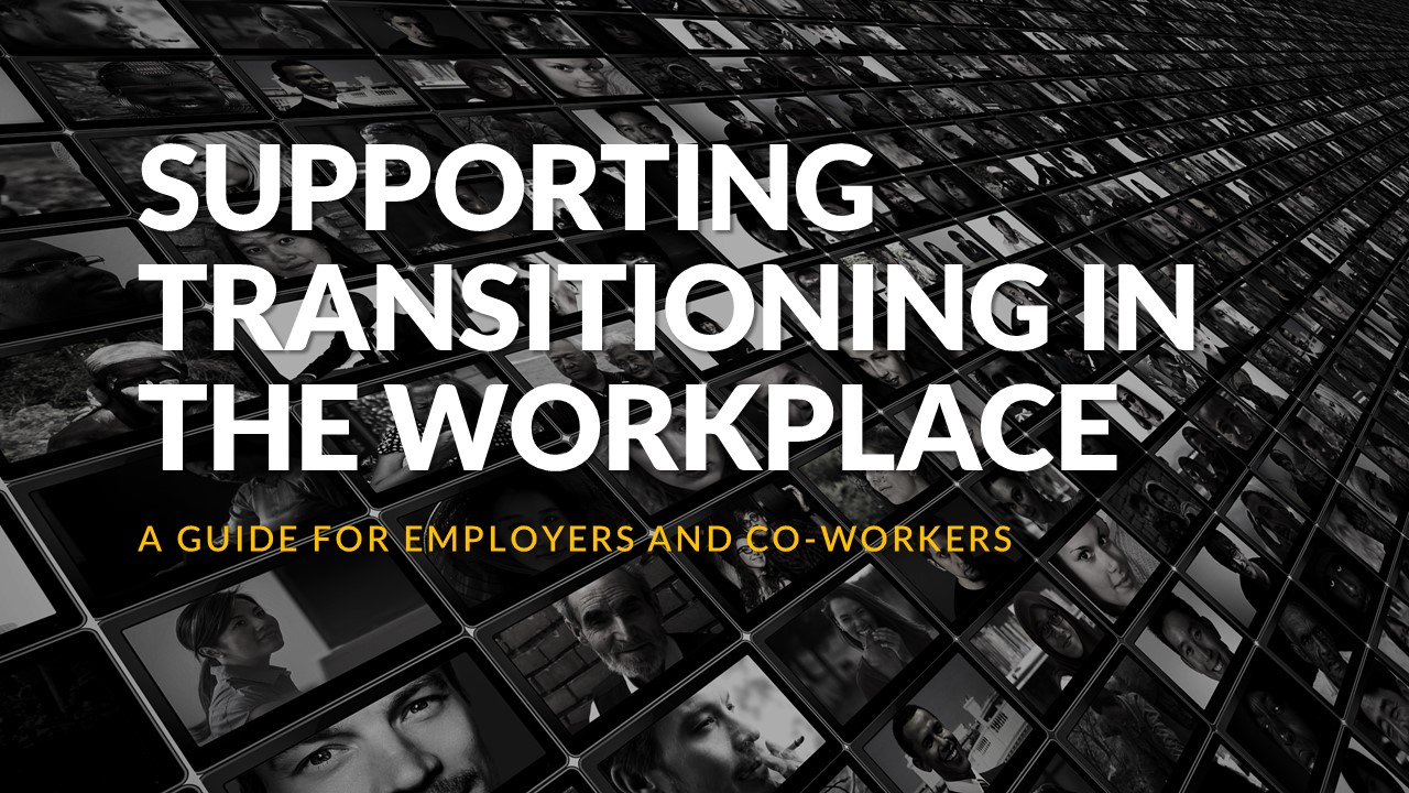 Supporting Transition at Work – A guide for Employers and Co-Workers – Synopsis