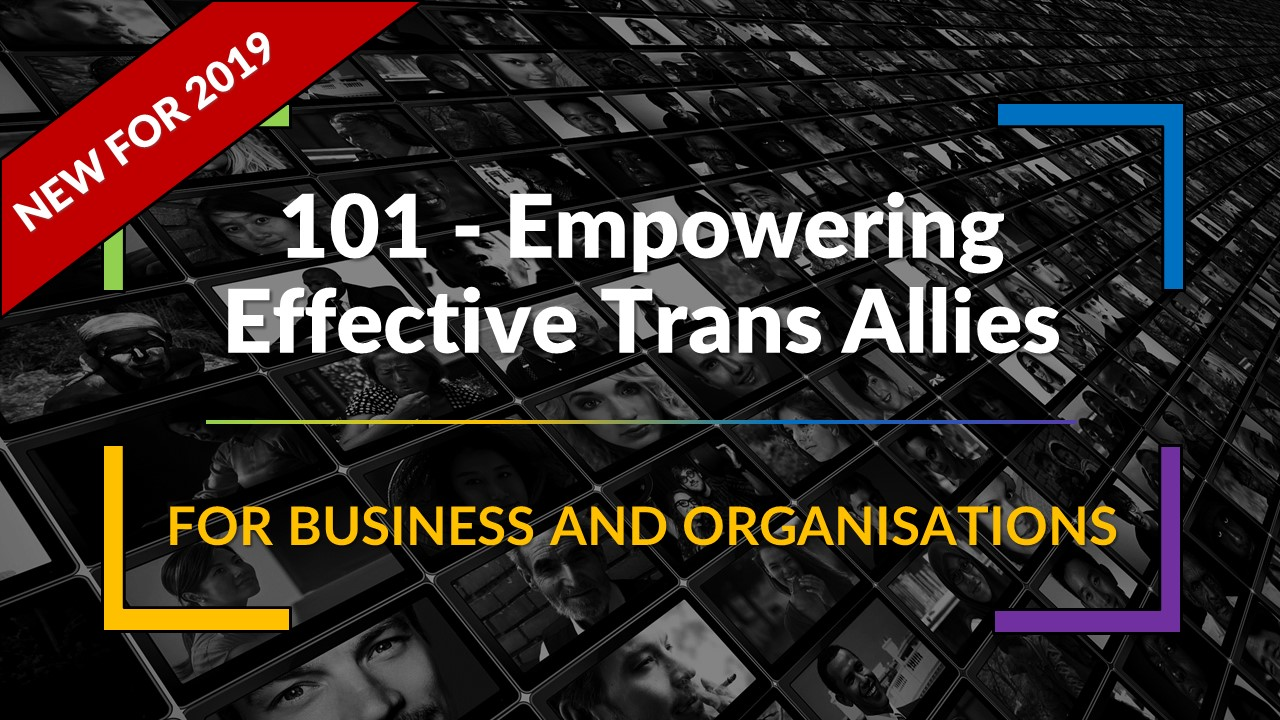 NEW 101 Introductory Level – Empowering Effective Trans Allies – Synopsis