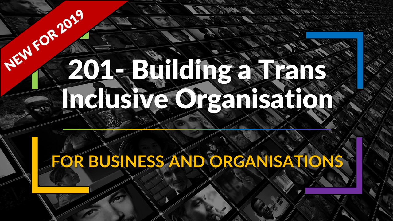 NEW 201 Intermediate Level – Building a Trans Inclusive Organisation – Synopsis