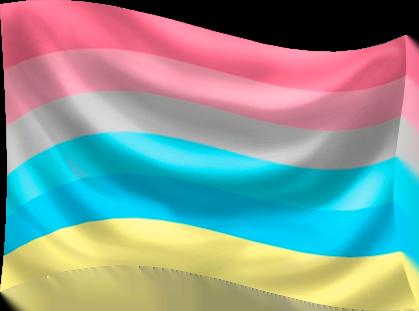 Genderflux Flag