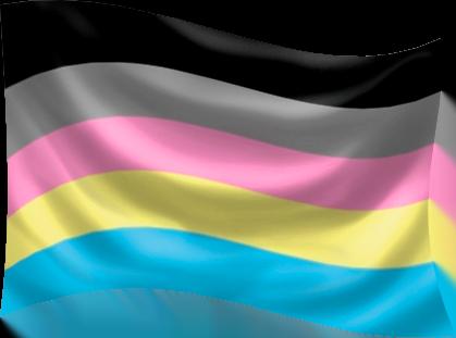 Polygender Flag