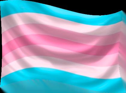 Transfeminine Flag