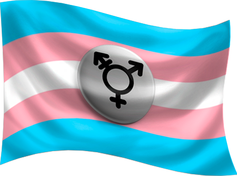 Transgender-Flag-with-Glyph